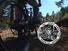 Mojo Wheels 4x track