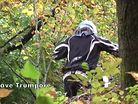 Bromont HD 10.03.09